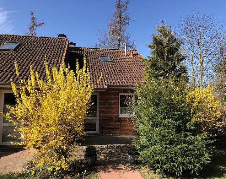 Eingangsbereich mit Terrasse, Rasenflächen und Abstellraum